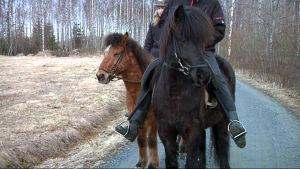 Två ryttare sitter på hästryggen.