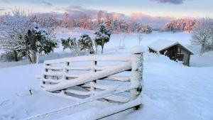 Talvinen maisema.