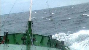 M/s Pamela i stormigt hav, Yle 2001