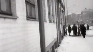 Yömajan asukkaita Lepakkoluolan edustalla.