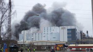 Brand i Björneborg