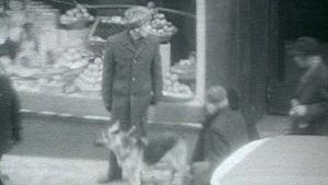 Koiravahdiksi pantu mies seisoo koiran kanssa liikkeen edessä ja katselee ympärilleen.
