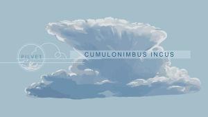 Cumulonimbus incus -pilvi