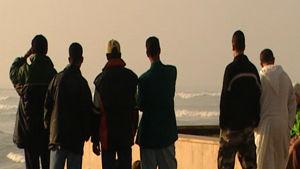 Marokkolaiset nuoret miehet katselevat merelle selkä kameraan päin