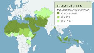 Det finns drygt 1,3 miljarder muslimer i världen. Kartan visar de länder där muslimer utgör minst 30procent av befolkningen.