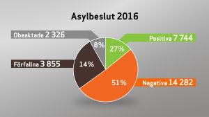 Grafik över asylbeslut år 2016