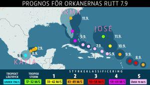 Prognoskarta för orkanernas rutt 7 september