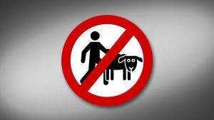 Förbud mot sex mellan människa och djur.