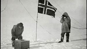 Roald Amundsen och Helmer Hanssen vid Sydpolen 1911.