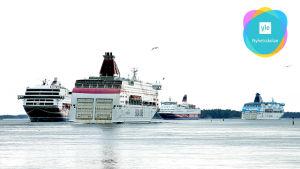 En bild på fyra kryssningsfartyg på avstånd. Bilden har Yle Nyhetsskolans logo i högra övre hörnet.