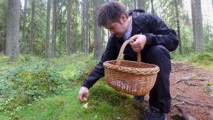 Henri Alén kävelee metsässä poimimassa sieniä.