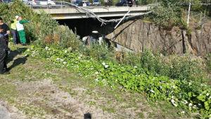 Det skadade räcket och bron.
