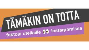 Kuvassa Tämäkin on totta -Instagramin logo