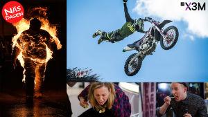 Bildkollage av vad som händer på näsdagen: Brinnande stuntman, Motocrosshopp och Simon och Märta som äter något äckligt.