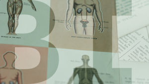 """ihmisen biologiaan liittyviä piirroskuvia ja tautsalla teksti """"BI"""""""