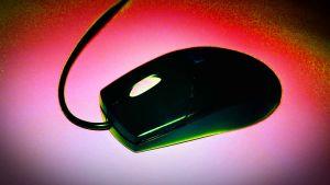 tietokoneen hiiri