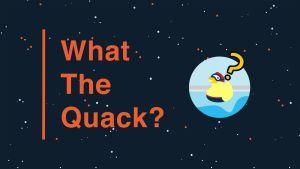 """En mörk bakgrund med texten """"What the Quack"""". På bilden finns också en ritad badanka med simglasögon och ett frågetecken ovanför huvudet."""