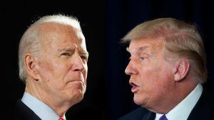 Collage med svart bakgrund på demokraternas presidentkandidat Joe Biden (till vänster) och republikanen, USA:s nuvarande president Donald Trump.