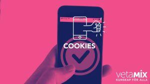 Digiträning om cookies