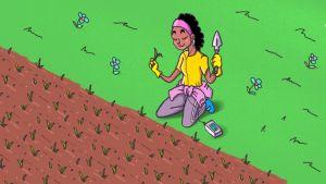 Henkilö kitkee rikkaruohoja