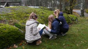 Kuvassa kolme lasta tutkii luonnossa sammalia