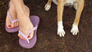 Ett par kvinnofötter, och ett par hundfötter på en gräsmatta.