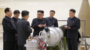 Kim Jong-un tillsammans med arméledningen.