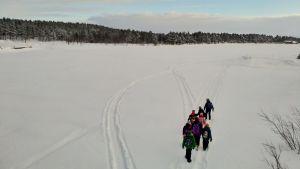 Inarin koulun saamenluokat kävelevät yhdessä uusiin koulutiloihin joka päivä tänä keväänä.