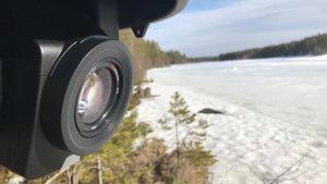En övervakningskamera som är monterad i ett träd