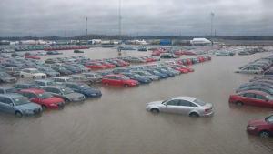 Nya bilar står i vatten under en översvämning vintern 2005.