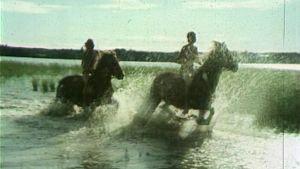 Kaksi hevosta ratsastajineen laukkaavat järvessä