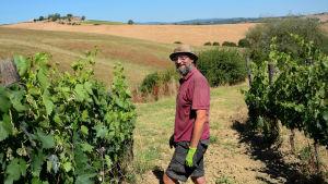 En anställd på vingården Paradiso Di Frassina i Toscana, Italien.