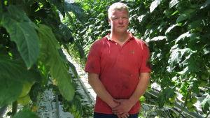 Växthusodlare Joakim Strand i sitt växthus