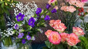 Bild på snittblommor. Rosa rosor och blåa blommor.