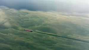 Ett fraktfartyg åker sydväst om Hangö med en enorm mängs blågröna alger blandat i vattnet.