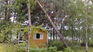 Myrskyn kaatama puu pikkumökin päällä