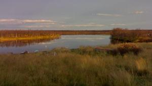 jokisuu, järvenlahti, rannalla veneitä