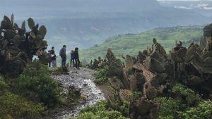 Familj som tittar ut över afrikanskt landskap