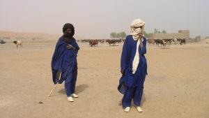 Fulaniherdar i Gourma söder om Gao i Mali 2005.