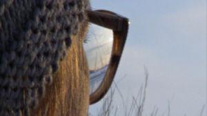Kvinna i profil tittar ut över vinterlandskap