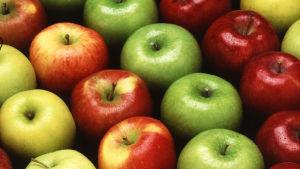 Olika sorters äpplen
