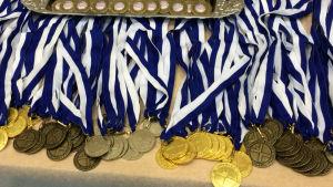 Finlands Svenska Gymnastikförbunds medaljer.