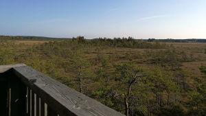 Utsikt från fågeltorn i Valkmusa nationalpark