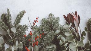 rso joulumainos