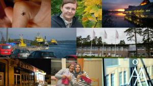 Åbolands nyhetsår 2015