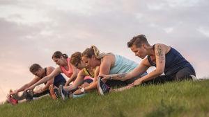 Människor gör gymparörelser på en gräslinda.