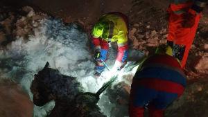 Räddningsteam jobbar nattetid med att rädda en islandshäst.
