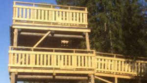 Det nya fågeltornet.