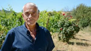 Carlo Cignozzi