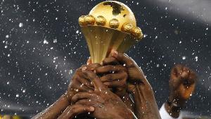 Nigeria är regerande mästare i Afrika.